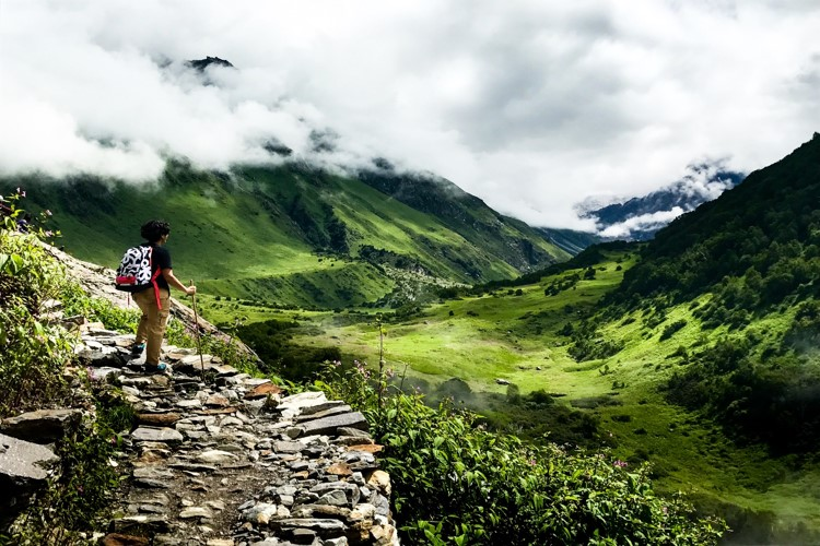 Best time for Valley of Flowers trek is in July