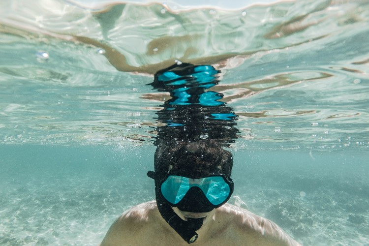 Things to do in Goa, snorkeling